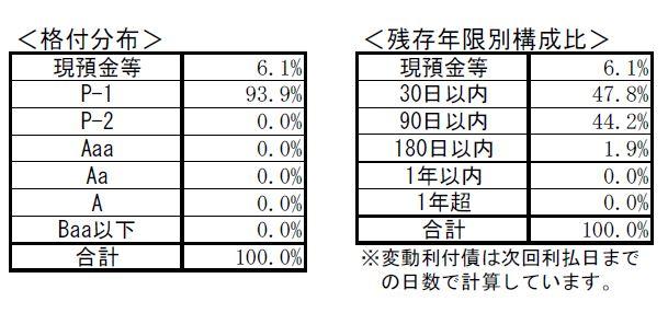 外貨MMFの投資の対象をあらわした表